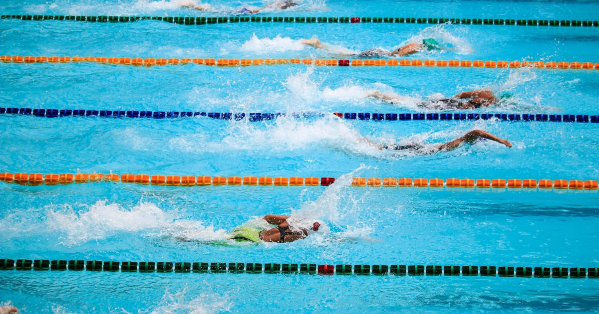 Swimmers side by side in their lanes during a race